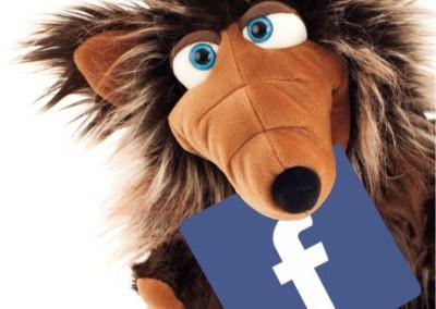 Facebook Pan Pacynka
